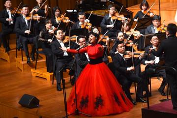 """2016年""""文化中国·全球华人音乐会""""北京上演"""