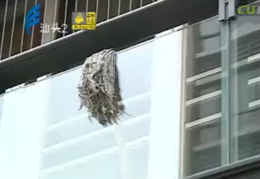 被砸碎的阳台玻璃 2017-01-06