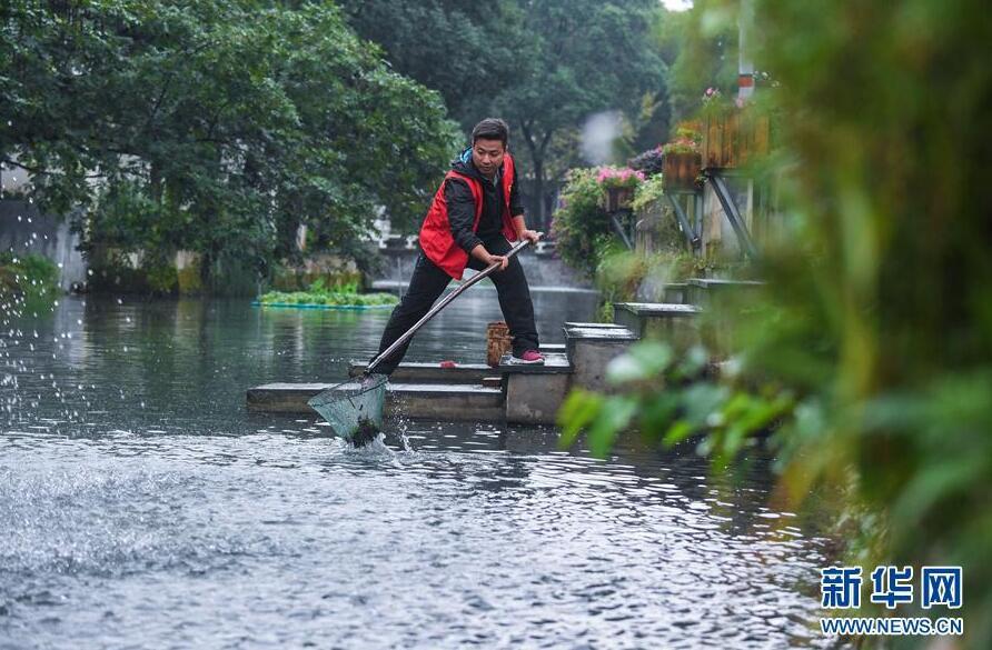 10月12日,长兴县龙山街道渚山村车渚港河道内,河长王佳在进行日常的
