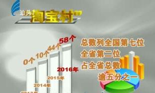 """""""淘宝村""""数量全省第二 2017-10-17"""