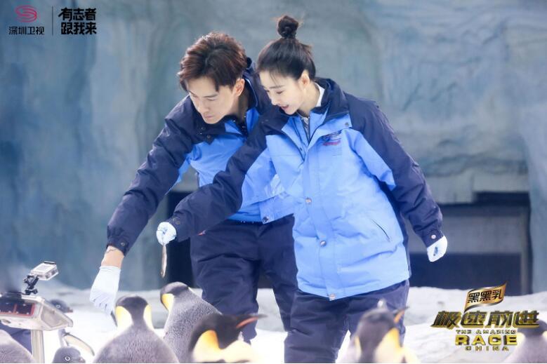 《极速4》贾静雯潜水变美人鱼 王丽坤喂企鹅花容失色