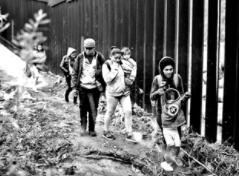 令人痛心的悲剧!美墨边境七岁女孩死于拘押