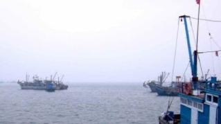 江苏表彰11位渔民 捕鱼作业发现9个可疑装置