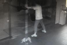 为祝朋友开业大吉,男子半夜偷3条锦鲤!结果……哈哈哈哈
