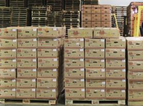 中国向伊朗捐赠25万只口罩