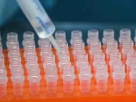 蓋茨基金會承諾向全球疫苗免疫聯盟捐贈16億美元