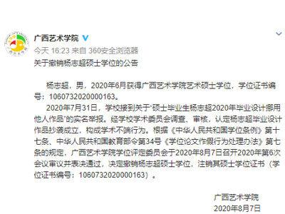 """广西艺术学院通报""""硕士毕业设计涉嫌抄袭"""":认定抄袭、撤销学位"""