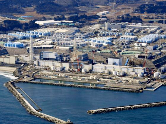 日本福島縣海域魚類因放射性物質超標被禁止上市